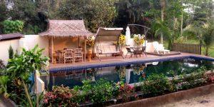 Palm view pool